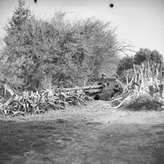 A anti-tank gun of Anti-Tank Regiment (Queen's Own Royal Glasgow Yeomanry), dug-in in Tunisia 20 February