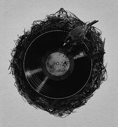 Vinyl Record Bird Nest