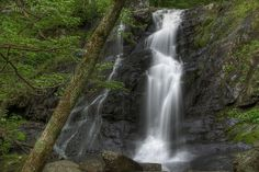 Jones Run   Flickr - Photo Sharing! Waterfall Hikes, Shenandoah National Park, Round Trip, National Parks, Skyline, Running, Adventure, Photo And Video, Pictures