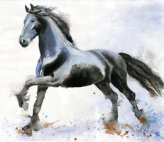 "This is my new watercolor painting ""Friesian Forward"""