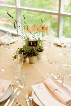 Herbal centerpieces (double as favors for guests). I love this for rustic weddings. Photo by Amber Wilkie Floral Centerpieces, Wedding Centerpieces, Wedding Decorations, Centrepiece Ideas, October Wedding, Wedding 2015, Wedding Ideas, Wedding Mood Board, Wedding Table