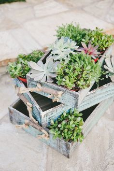 #succulent Photography: Onelove Photography - onelove-photo.com Read More: http://www.stylemepretty.com/2014/08/08/french-garden-inspired-wedding-at-carmel-valley-ranch/
