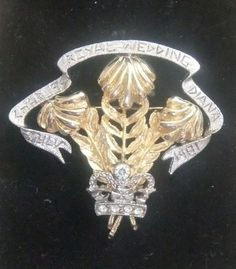 Princes of Wales feather commemorative brooch for Diana. Prince Of Wales, Princess Diana, Feather, Brooch, Quill, Brooches, Lady Diana, Feathers