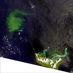 The plume of the submarine eruption located at 33 km from the main island of Tonga, Tongatapu, at the bottom right of the image - photo Nasa Landsat 8 / USGS
