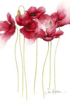 Poppies by Jan Harbon [so perfect] This im. - Introducing artist, Jan Harbon… Poppies by Jan Harbon [so perfect] This image has get 15 repi - Art And Illustration, Art Illustrations, Art Floral, Watercolor Flowers, Watercolor Art, Painting Flowers, Floral Paintings, Watercolour Paintings, Drawing Flowers