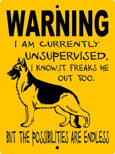 "GERMAN SHEPHERD Dog Sign 9""x12"" ""ALUMINUM"" wus1 THIS IS MUCH OUR AUGGIE!!!!"