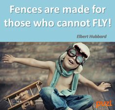 Fences are made for those who cannot fly!