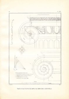 Scroll Shaped Capital  Ionic Order Vignola, $16.00
