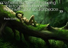 Success is being able to go to bed each nighy with your soul at peace.
