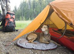 Ruffwear Highlands Bed™   Dog Bed for Backpacking, Camping, and Outdoor Adventures