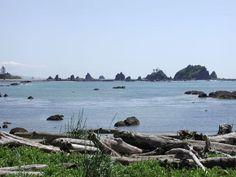 Third Beach — Washington Trails Association