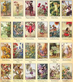 Flower fairies-I loved these books and want to read them with my niecey