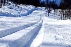 31 Best Vinter älska Snö Images