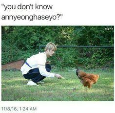 jin, meme, and bts image