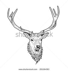 Kuvahaun tulos haulle deer head line art