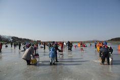#12월축제 #FESTIVAL #강화도빙어축제 #겨울축제 #양평빙어축제 #에스제이진 #평창송어축제 #화천산천어축제