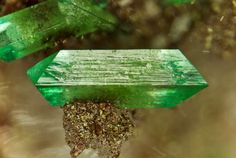 Cuprian Adamite: Mineral information, data and localities. Minerals And Gemstones, Rocks And Minerals, Stones And Crystals, Gem Stones, Healing Crystals, Healing Stones, Minions, Frame By Frame Animation, Crystal Magic