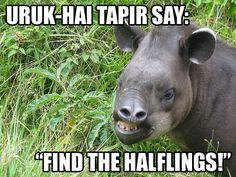 Uruk-hai tapir.