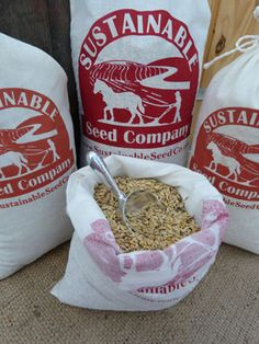 Bulk Wholesale Heirloom Seed Sales - Sustainable Seed Co. Re-use year after year and better nutritional content! Fruit Garden, Garden Seeds, Organic Gardening, Gardening Tips, Organic Seeds, Down On The Farm, Farm Gardens, Urban Farming, Seed Starting
