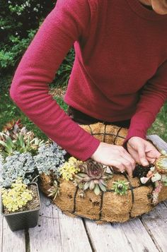 After you fill the wreath form with sand and potting soil, you will reassemble the wreath form and make holes with a knife where the plants will go. For full instructions and a complete listing of succulents used visit the blog.