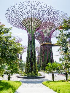 Garden by the Bay - Singapour Green Architecture, Futuristic Architecture, Amazing Architecture, Landscape Architecture, Landscape Design, Garden Deco, Garden Art, Garden Design, Singapore Garden