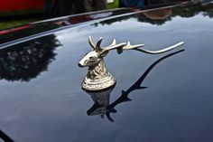 Hood Ornaments Are The Best Part Of Pebble Beach.Re- pin brought to you by at Car Badges, Car Logos, Automobile, Car Hood Ornaments, Car Radiator, Dupont, Eugene Oregon, Nice Cars, Pebble Beach