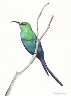 The Malachite Sunbird / Teal, Green, Blue, Emerld Green / Bird Art. $15.00, via Etsy.