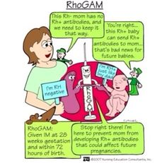 RhoGAM 2x during pregnancy cause mixing of blood can occur before birth