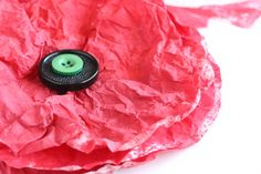 Close up of coffee filter poppy