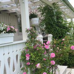 Buongiorno…    Oggi siamo in Svezia a casa di Ingela, amante dello stile shabby e sopratutto patita di giardinaggio e di fiori,...