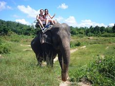 I want to ride an elephant in Thailand!