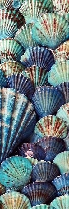 Blue-seashells. Please also visit www.JustForYouPropheticArt.com for colorful Prophetic Art paintings, prints and stories and like my Facebook Art page for more art at http://www.facebook.com/Propheticartjustforyou Thank you so much! Blessings!