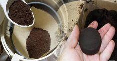 Kávičkári! Na dne hrnčeka máte hotový poklad: Tento účinok kávovej usadeniny ocení každá jedna žena! – Báječné Ženy