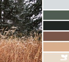 Winter Tones - http://design-seeds.com/index.php/home/entry/winter-tones6