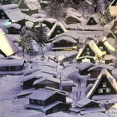 Roofing designed for snow #japan