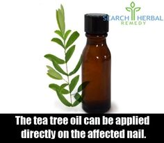 http://mkthlth2.digimkts.com This saved my life in between toe fungus tea tree oil