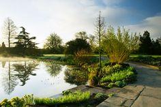 RHS Garden Hyde Hall - The Upper Pond in spring.