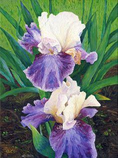 "watercolor iris paintings | Irises III (2011), 9 x 12"""