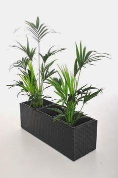 blumenk bel aus polyrattan on pinterest urban gardening catalog and blog. Black Bedroom Furniture Sets. Home Design Ideas