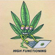 Dab Humor marijuana types medical marijuana evaluations, colorado medical marijuana, colorado marijuana law, can marijuana kill you, Nevada medical marijuana, blue dream marijuana, marijuana leaves. http://plantingpot.com is your source for all thing marijuana.