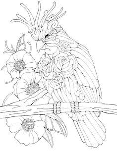 Animal drawings I did for Lampara Books Coloring book. Bird Coloring Pages, Adult Coloring Pages, Coloring Sheets, Coloring Books, Animal Drawings, Pencil Drawings, Silk Art, Mandala, Print Pictures