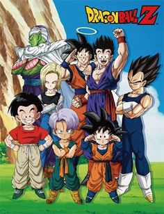 Dragon Ball Z Family Group in Lawn Sublimation Throw Blanket