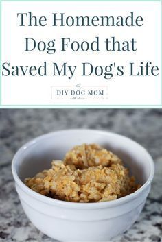 Home made dog food this recipe is great for diabetic dogs and over the diet that saved my dogs life forumfinder Image collections