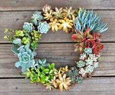 Deko Ideen für den Garten mit Sukkulentenkranz in bunten Farben