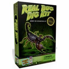 Real Bug Dig Kit by Discover with Dr Cool.  Discover Scorpions, Spiders etc. up close and personal like ,, ewwww