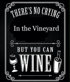 Tasting wine is something that a lot of parents, particularly the moms want to do as this allows them to find new wines to drink, but also a wine tasting evening usually means getting away Wine Jokes, Wine Meme, Wine Funnies, Funny Wine, Traveling Vineyard, Wine Signs, Wine Down, Wine Craft, Wine Guide