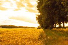 Germany Country Gildehaus Grafschaft Bad Bentheim