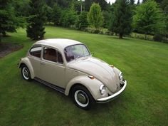 1969 VW Beetle......my first car looked exactly like this. Great memories.