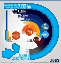 Zambian Jobs Profile Infographic