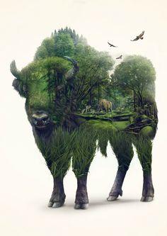 Digital Art: Bison by Lukasz Poslad